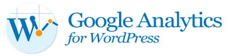 Install Google Analytics wordpress websit
